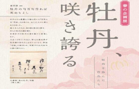春季企画展「牡丹、咲き誇る」